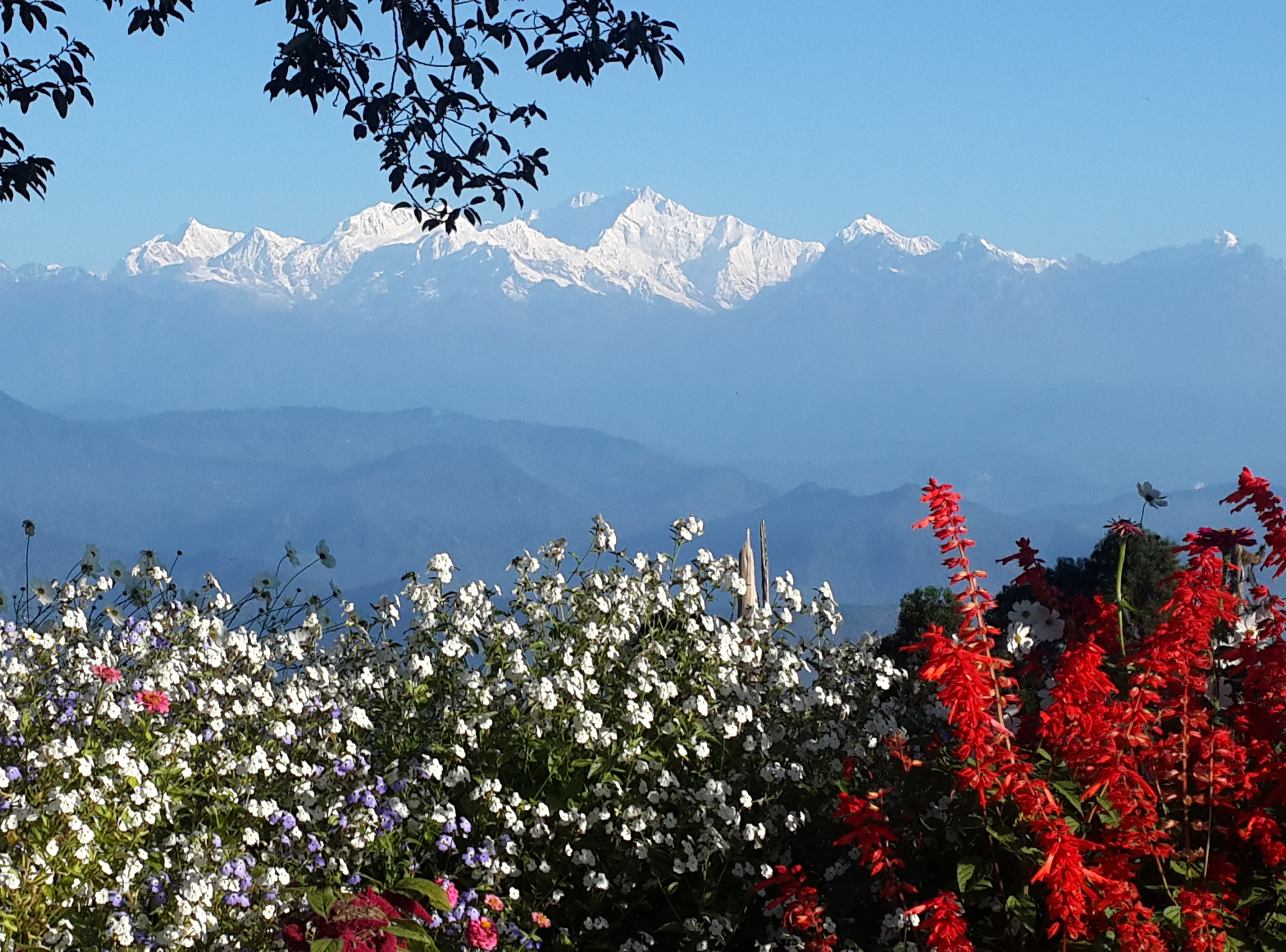 Biodiversity of Eastern Himalayas: A Treasure trove of learning for students
