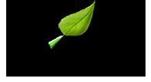 envirotrips logo