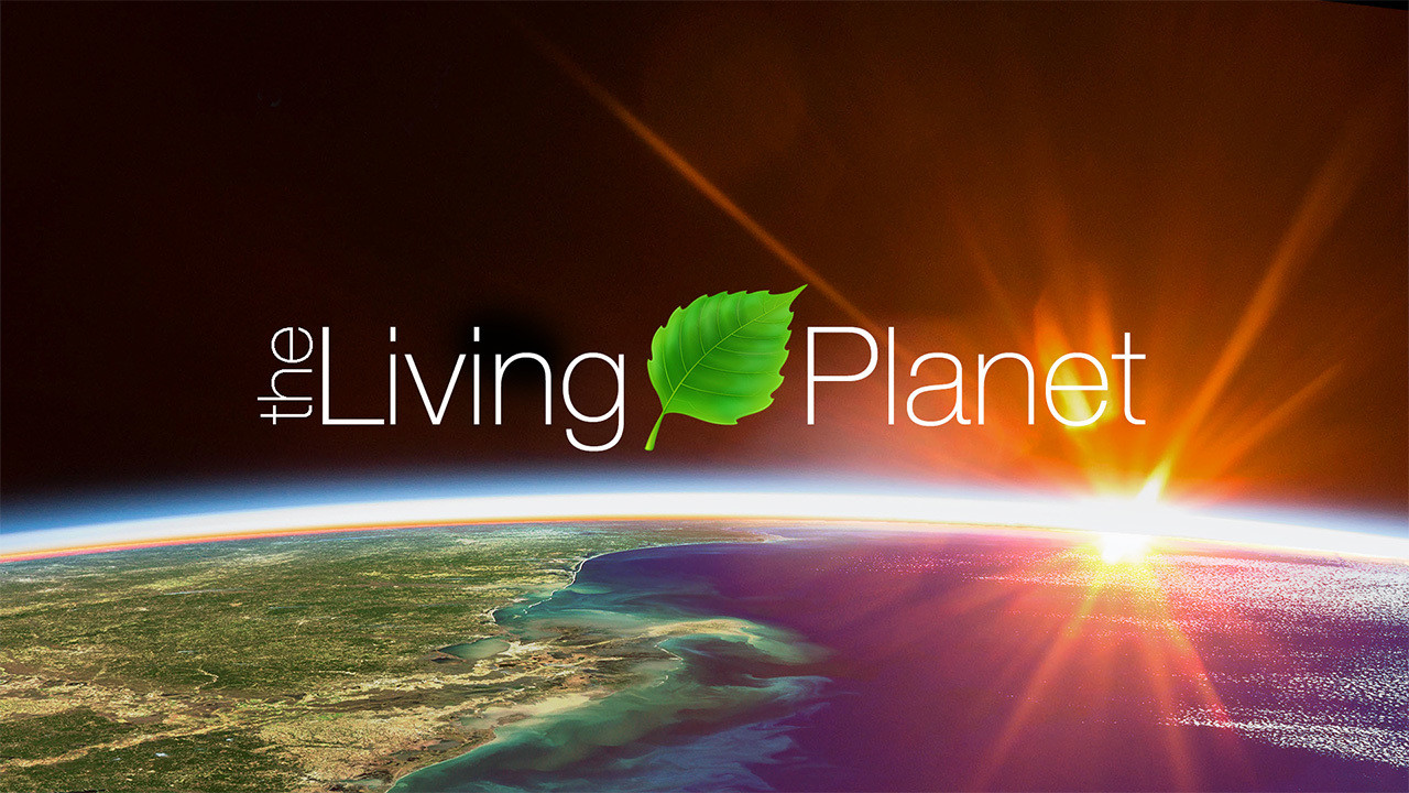 Alarming decline in nature… Extinction crisis faced by Earth: The Living Planet Report 2018